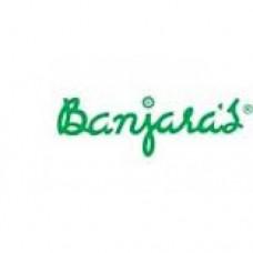 Banjara's Hibiscus Oil 100 ml
