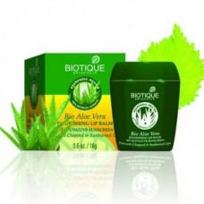 Biotique Bio Aloe Vera 16g
