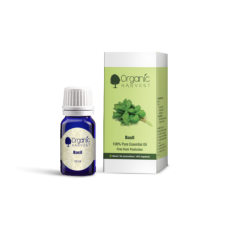 Organic Harvest Basil Essential Oil 10ml