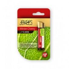 Jovees Winter Cheery lip care 4g